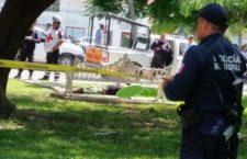 Ejecutan a 8 personas, entre ellas dos mujeres, un policía y un biólogo