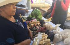 Exponen maíz de calidad en la Feria de la Milpa de Tlaxiaco