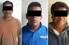 Hurtaron 81 borregos en Nochixtlán