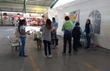 Promueven el cuidado animal en Tamazulápam; reportan 200 caninos y felinos en situación de calle