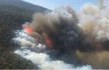 Suman 242 incendios en Oaxaca que han consumido 30 mil hectáreas; 13 permanecen activos