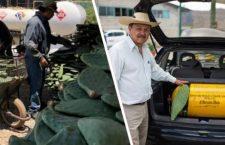#CIENCIA Y TECNOLOGÍA | Mexicanos crean combustible hecho de nopales