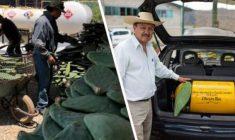 #CIENCIA Y TECNOLOGÍA   Mexicanos crean combustible hecho de nopales