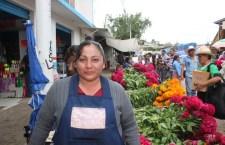 En la Mixteca se cultivan flores de muerto para reforzar tradiciones y economía