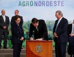 Plano AgroNordeste prioriza cadeias agropecuárias e promete benefícios para Vale do Assu