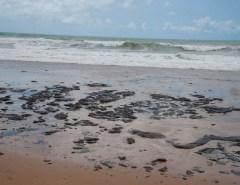 VÍDEOS: Análises confirmam óleo venezuelano no litoral nordestino, destaca Marinha
