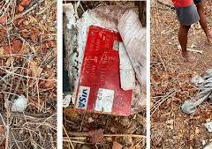 Ossada humana é encontrada em área de mata de Mossoró por agricultor