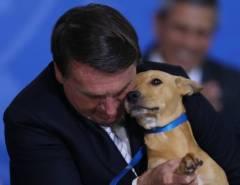 Ninguém Segura: Aprovação de Bolsonaro sobe e chega a 52%. A petralhada vai à loucura