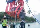 Manatíes volverán a su hábitat natural