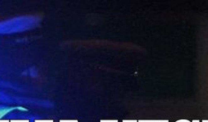 Водени топови и солзавец против партијата на круната во Брисел!