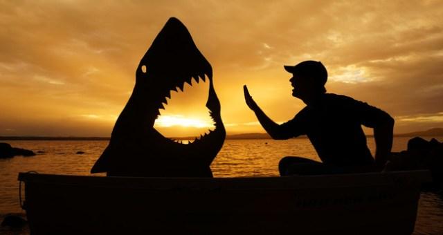 Ikan Jerung Selfie