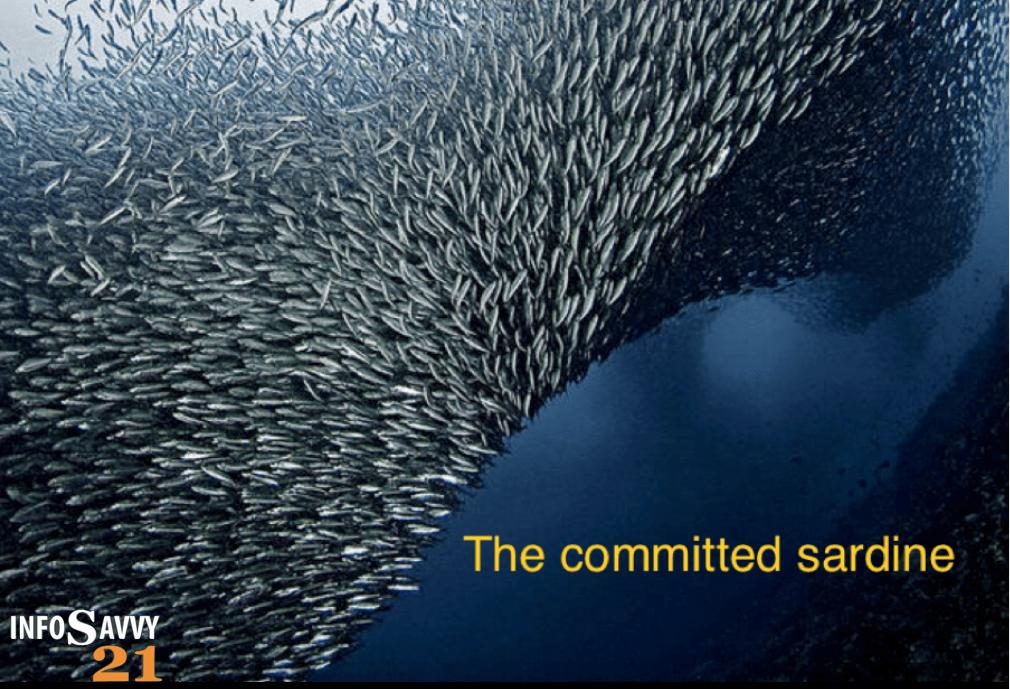 Committed Sardine Logo 2
