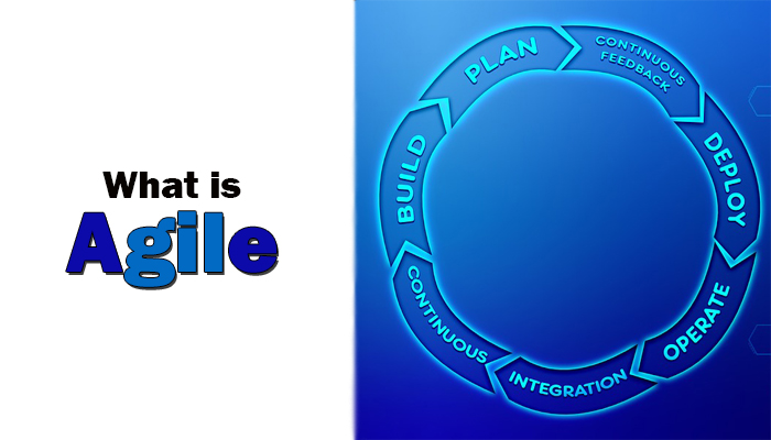 What is Agile and its principles