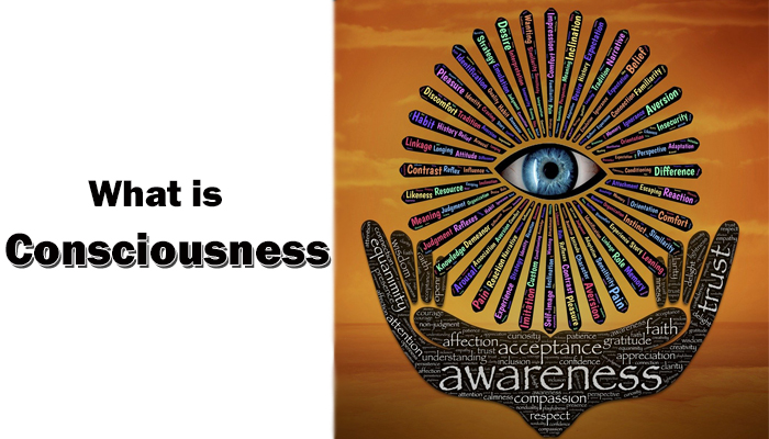 Consciousness – Know Everything in depth about it