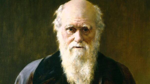Charles Darwin's tree of life is 'wrong and misleading', claim scientists