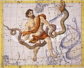 Photo of What's Your Zodiac Sign?