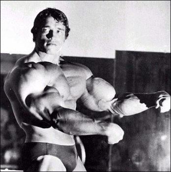 Schwarzenegger Dedicates Museum to Himself: The Governator  1