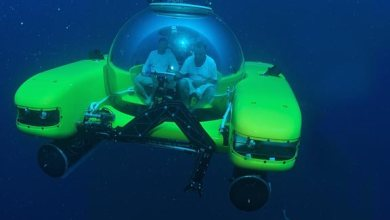 Photo of 'Titanic' director dives to Pacific's deepest point