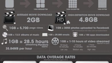Photo of What's Eating Up Your Data Plan? [Infographic]
