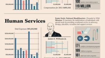 The Highest Paid CEOs in Charity [Infographic] 1