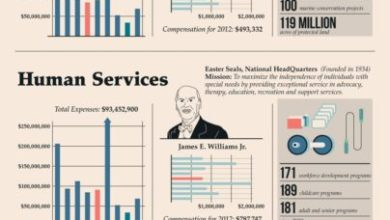 Photo of The Highest Paid CEOs in Charity [Infographic]