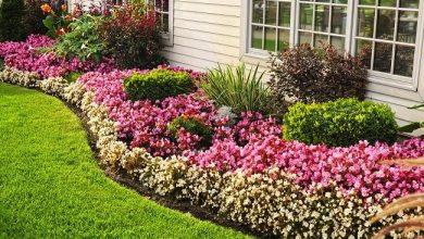Photo of Get Your Garden Modernized