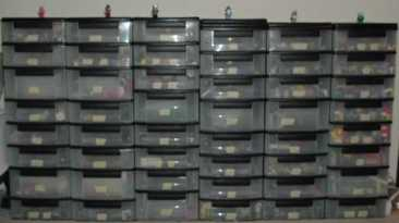 Affordable Storage: The Choice for Those with the Collecting Gene 16