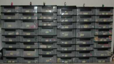 Photo of Affordable Storage: The Choice for Those with the Collecting Gene