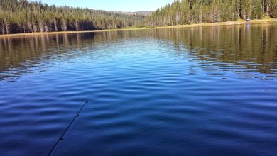 Photo of 10 Most Popular Lakes for Fall Fishing 2013