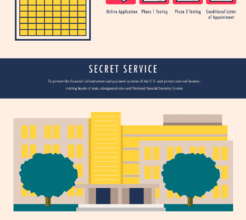 Photo of What's Involved In The Hiring Process For A Government Job? [Infographic]
