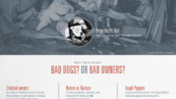 Science Of Pit Bulls [Infographic] 6