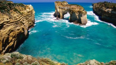 Photo of 7 Reasons Why You Need To Travel to Australia
