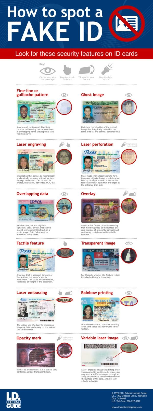 How to Spot a Fake ID[Infographic]
