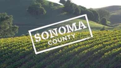 Photo of Where To Go And What To Do In Sonoma County [Infographic]