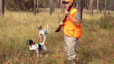 Photo of Reasons to Get into Hunting If You've Never Had An Interest Before