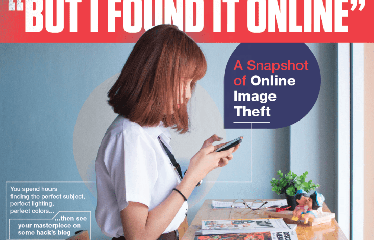 Photo of The Scourge Of Online Image Theft [Infographic]