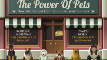 How Pets Can Power Up Your Business 1