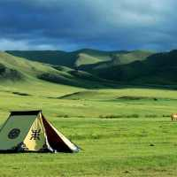 Top 10 Largest Grasslands in The World