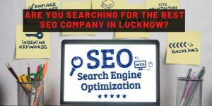are you searching for best seo company in india