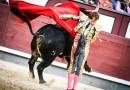Vuelta al ruedo al valor y firmeza de Román en Madrid