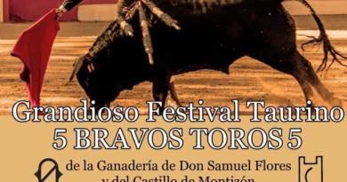 El tradicional festival taurino de Povedilla, con cartel