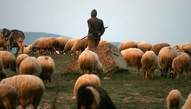 """Пресс-секретарь МО Армении: """"Отныне азербайджанская армия не сможет прятаться за спинами своих пастухов и земледельцев"""""""