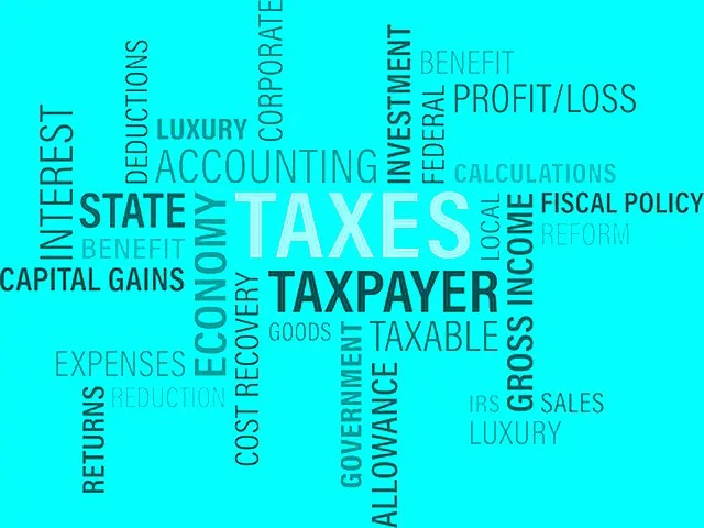 5 Reasons Tax Services Are Essential For Business