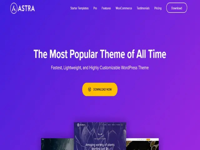 Astra Top E-Commerce WordPress Theme For Business In 2021