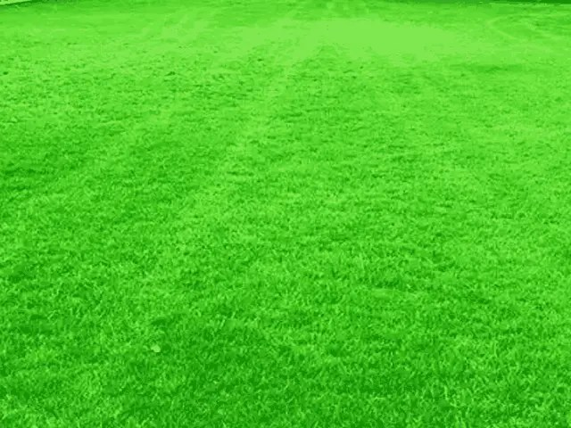 How To Place Artificial Grass Rug In Your Garden 3
