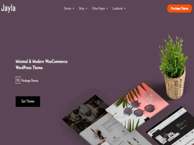 Jayla Top E-Commerce WordPress Theme For Business In 2021