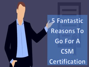 5 Fantastic Reasons To Go For A CSM Certification