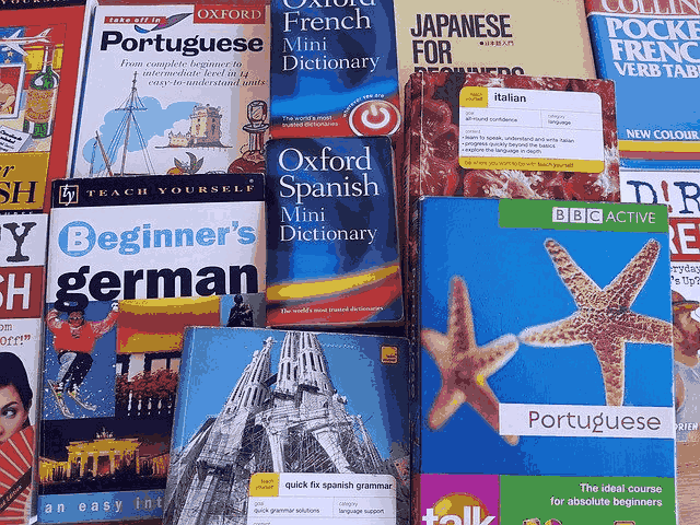 Why You Should Take A Course To Become Proficient In A Second Language 2