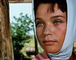 Фильм «Стряпуха» 1965: актеры и интересные факты о фильме