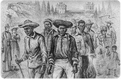 Письмо раба, написанное бывшему хозяину 150 лет назад, потрясло полмира.